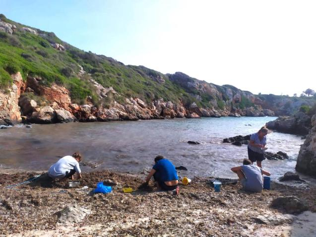 Volunteers from the group that has adopted the Mesquida collect plastic waste