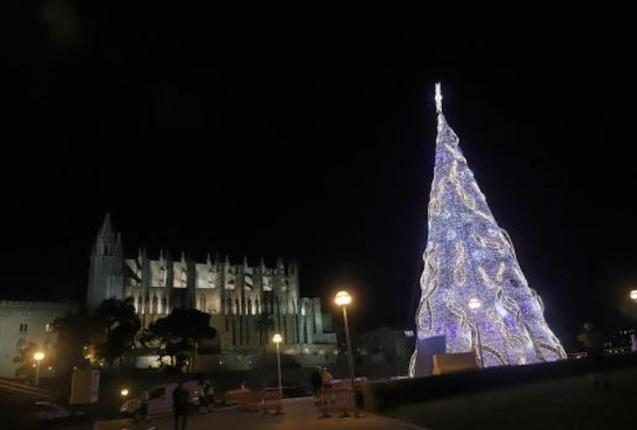 Palma Cathedral and Christmas tree.