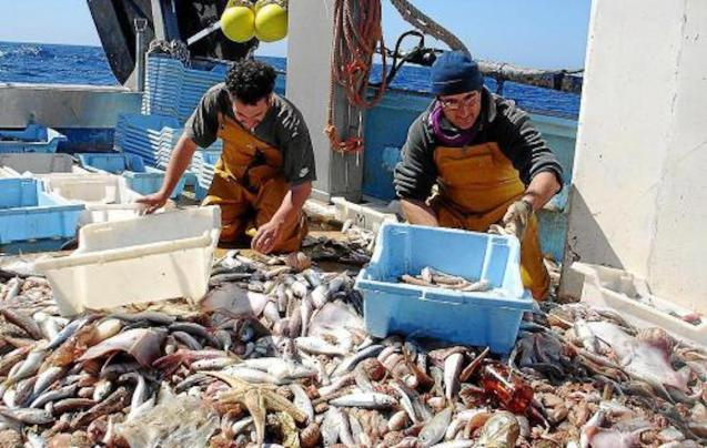 Fishermen with their catch in Mallorca.