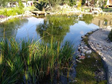 What an amazing swimming pond this is with Margaux Mango Yogini.