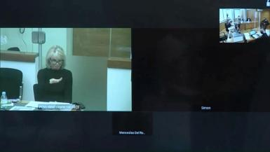 Corinna Larsen, close personal friend of former Spanish King Juan Carlos, testifies in court by video conference from London.