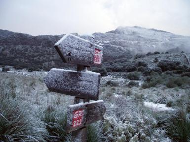 Snow on the mountains.