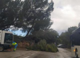 Freak storm hits Mallorca