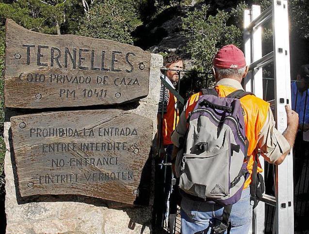 Camino de Ternelles, Pollensa.
