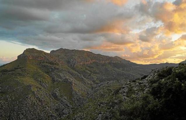Puig Roig, Mallorca.