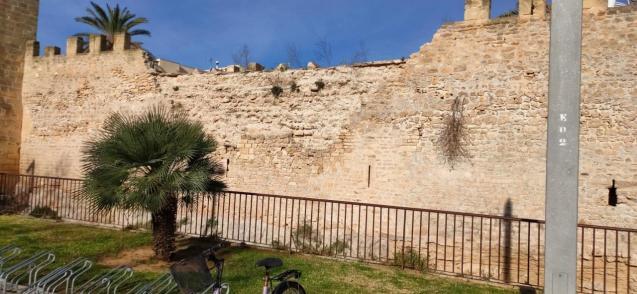Alcudia's wall