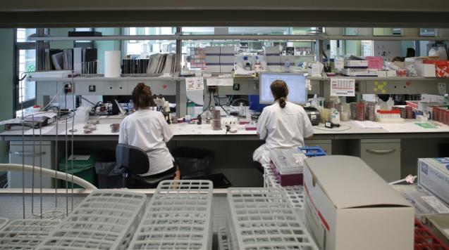 Microbiology laboratory at Son Espases Hospital, Mallorca