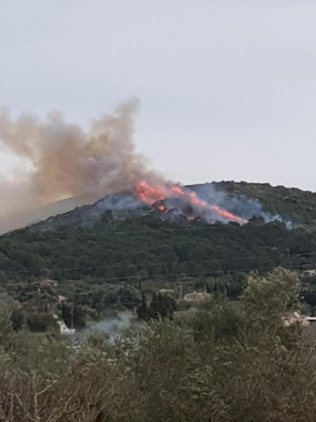 Forest fire in Alcudia, Mallorca