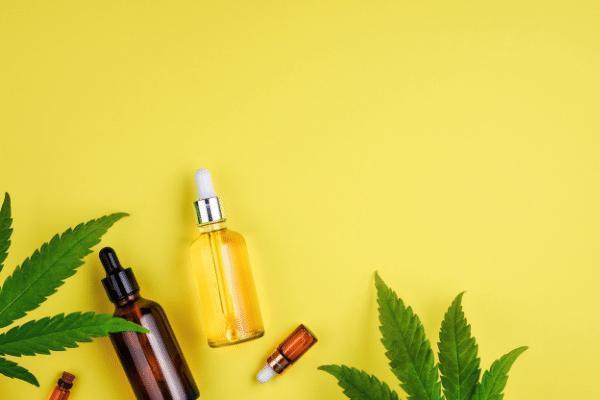 Purchase high- quality CBD flowers, CBD oils and CBD hash through the internet