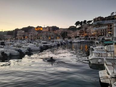 the quiet Puerto Soller in these unique times.