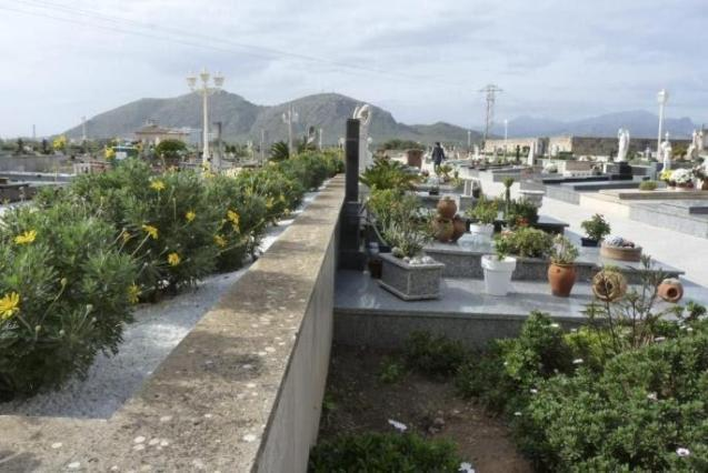 The local police are looking for the woman who stole the flowers from the Alcúdia cemetery