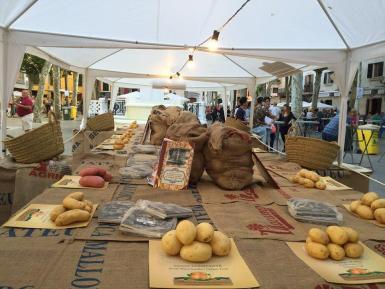 Potatoes from Sa pobla.