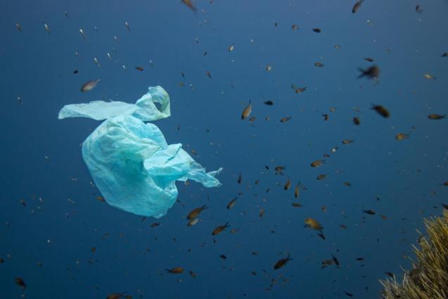 Plastic waste in the sea