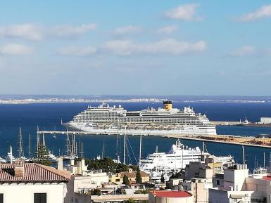 There have been no cruise ships in Palma since March last year.