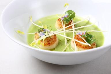 Pan-Fried scallops with fresh pea, lime & Mint soup
