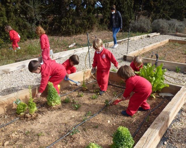 The Nursery class activities