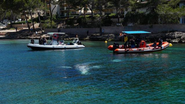 Monitoring Wally the whale in Santa Ponsa