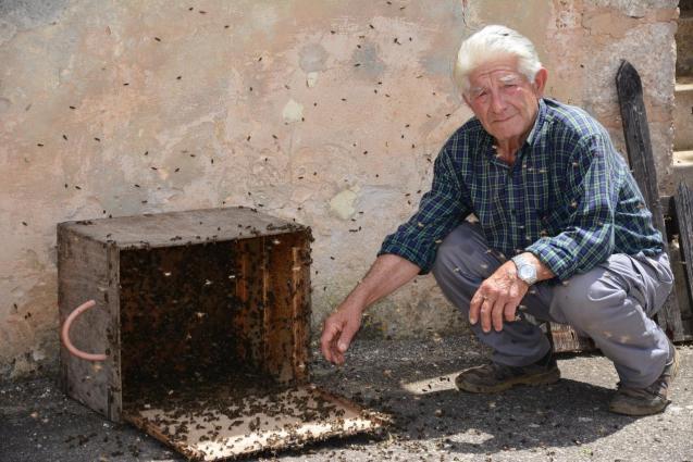 Tomeu Pizà with beehive box.