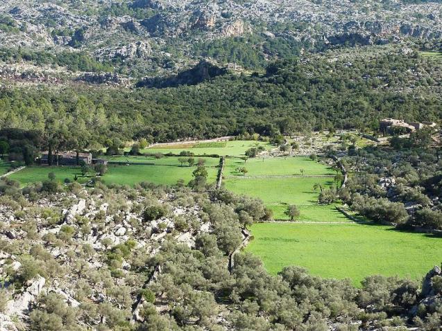 Scene in Escorca, Mallorca