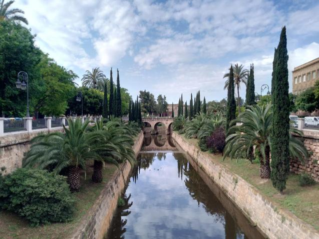 Palma City Council is going to have a busy summer unless it calms things down