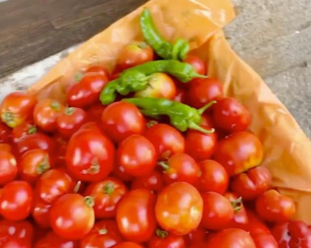 Catherine Zeta-Jones shows her tomatoes from her garden in S'Estaca
