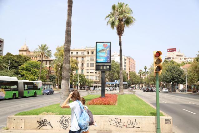 Mallorca heatwave.