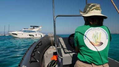 The posidonia surveillance service has fifteen boats at present.