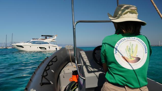 Balearics posidonia surveillance service