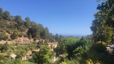 Deia view