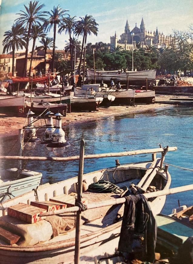 Boats in Palma Harbour & Cathedral.