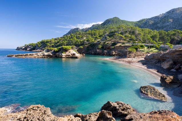 Britons may have opted for staycations this year but they are safer in Mallorca!