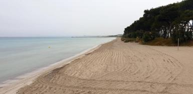 The Playa de Muro (beach).