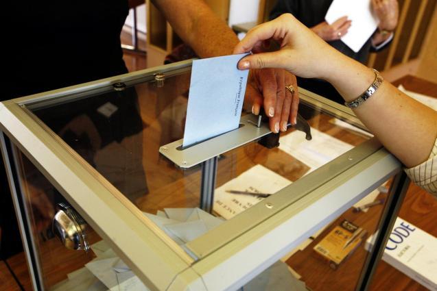 Expats vote