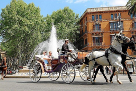 Horse carriages' regulation unlikely until after the summer