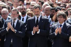 Terror, drink and rentals: the week in Majorca