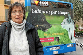 Palma buses to be used for campaign against pet abandonment