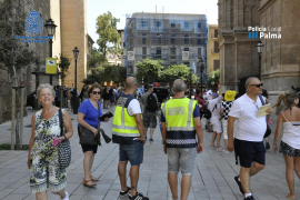 Police forces combining to stop thefts in Palma