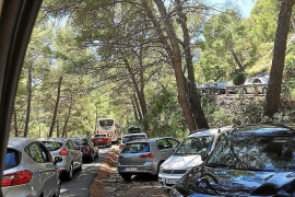More traffic chaos in Formentor