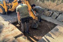 Civil War grave exhumation work starts in Sencelles