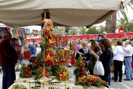 What's on in Majorca: 16-21 October
