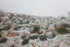 Majorca freezes