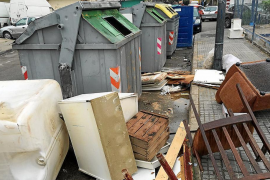 Environmental offences in Palma go down