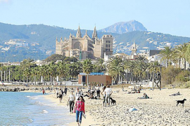 Record hotel occupancy in Palma for Constitution holiday