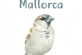 Council of Majorca publishes guide to urban birdlife