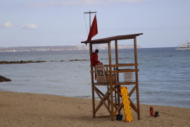 Work starting in March to stop Palma beach spills