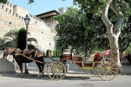 Cost of Palma carriage rides to go up