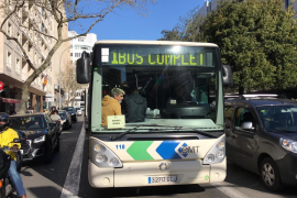 Palma bus strike gets 100% support