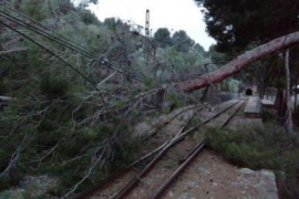 High winds Easter buffeting for Majorca