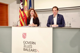 Cala Ratjada and Alcudia railways in government transport plan
