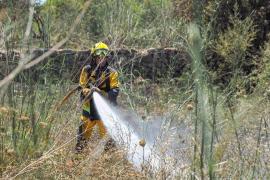 Balearics on forest fire alert